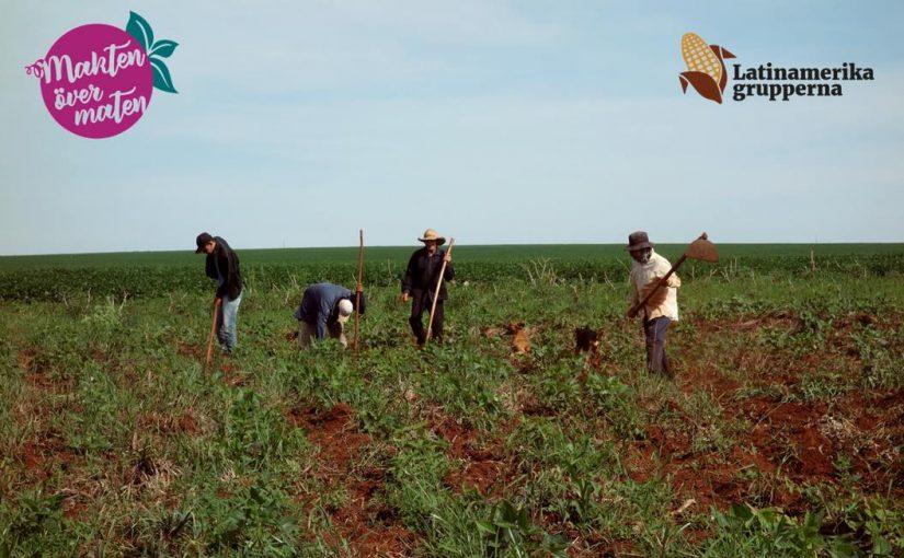 Agroekofestival: makten över maten